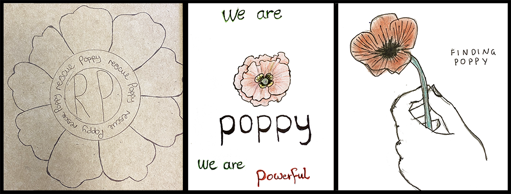 Hove Park School logo designs for Project Poppy